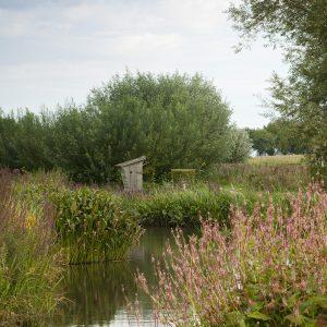 Garten am Wasser