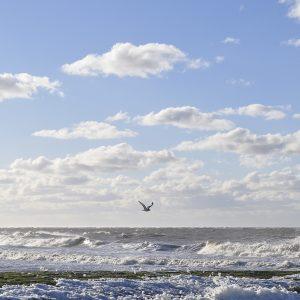 Meer Norderney